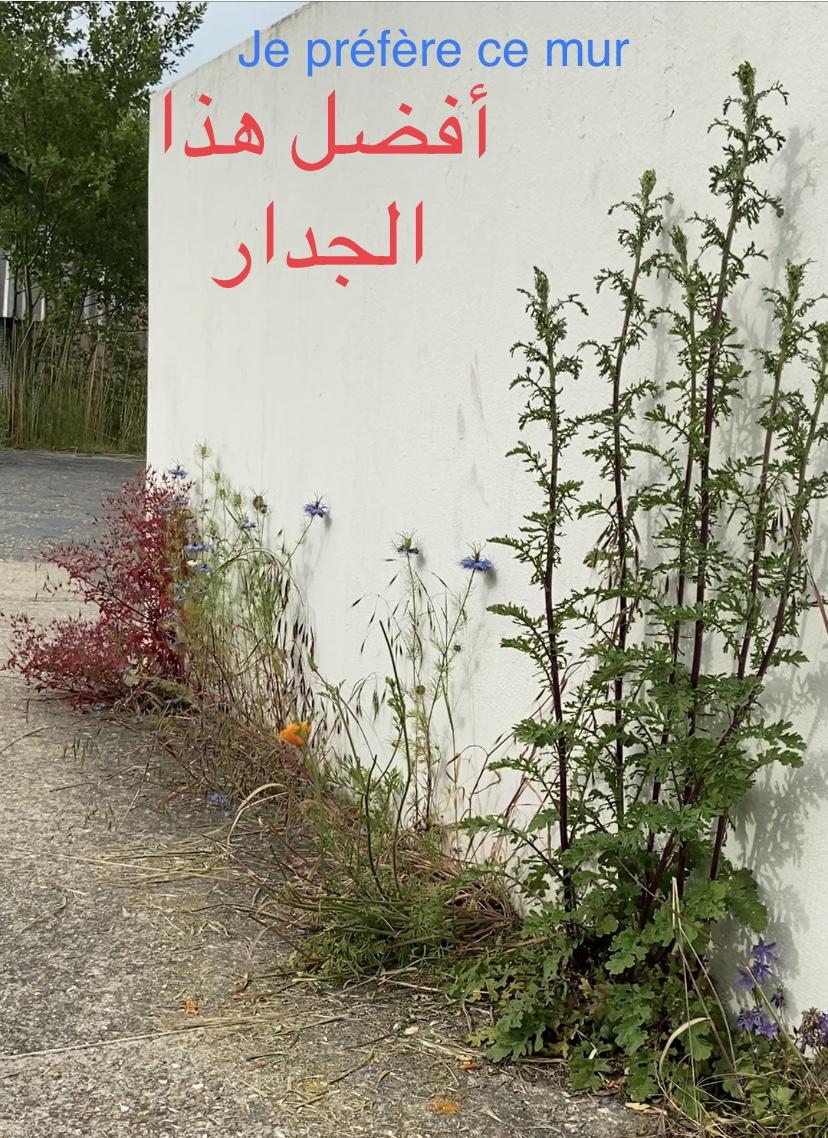 Un mur dans un parc avec des fleurs